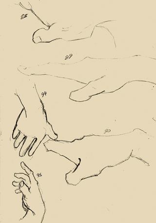 Hand Studies